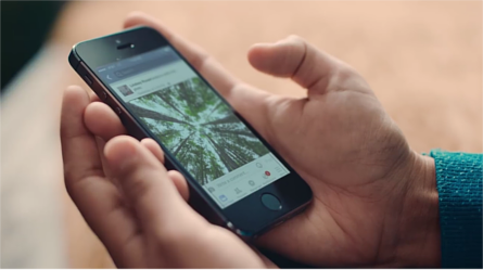 Hands holding an iPhone with Facebook app displayed. On screen is an image of trees in a forest. Image credit: Automatic Alternative Text by Facebook Accessibility
