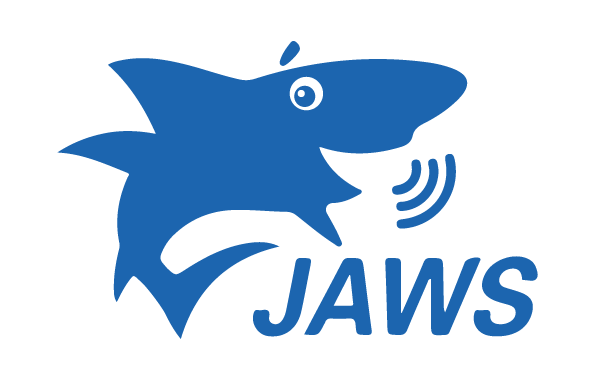 JAWS screen reader gets more bight | Media Access Australia