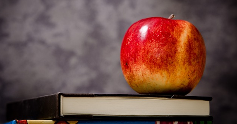 Apple resting on top of books in front of a blackboard